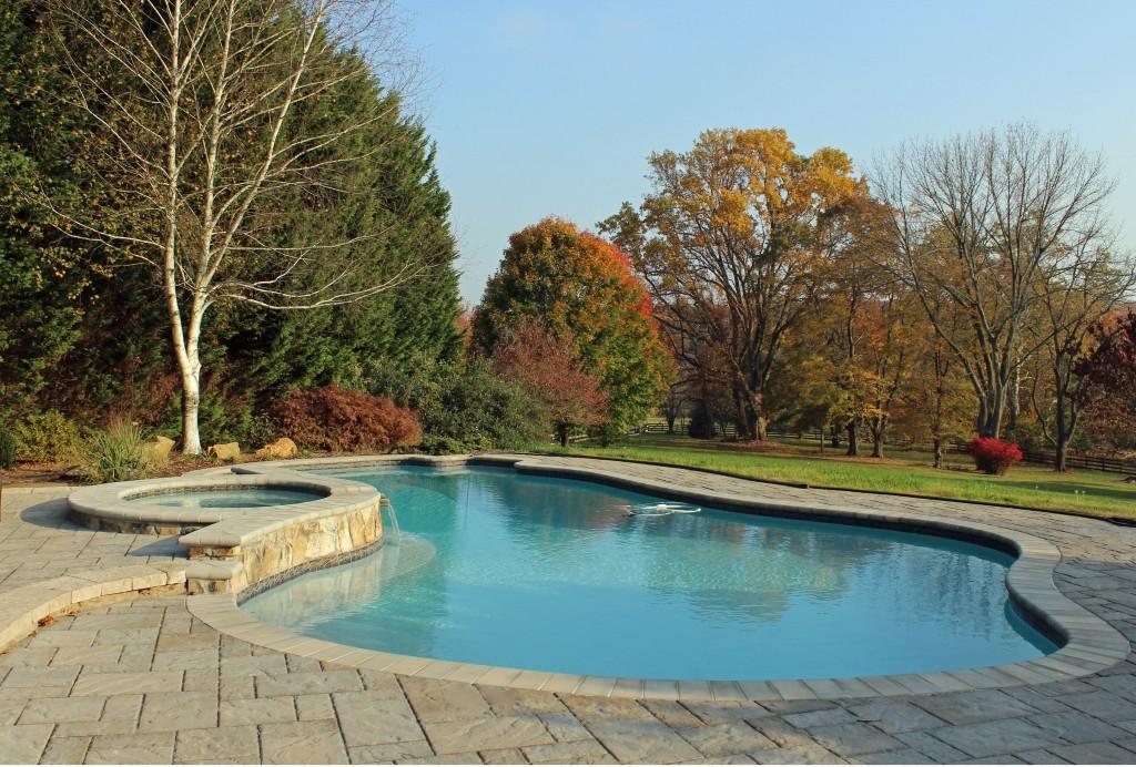 Natural Poolside Garden | West Winds Nursery