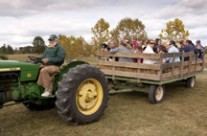 2014 Arborfest Plant Sale at Blandy – Oct 11 & 12