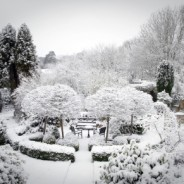 Winter – A Great Time for Planning Your Garden