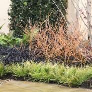 Home and Garden Exhibit 2014 plant list